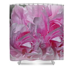 Summer Shower Curtain by Barbara S Nickerson
