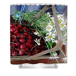 Summer Basket Shower Curtain by Vicky Tarcau
