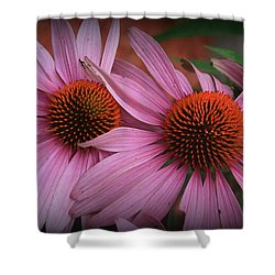 Summer Beauties - Coneflowers Shower Curtain