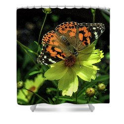 Shower Curtain featuring the photograph Summer Beauty by Bruce Carpenter