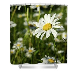 Shower Curtain featuring the photograph Summer Beauty by Kennerth and Birgitta Kullman