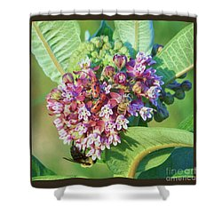 Summer Bees And Beetles Shower Curtain