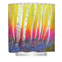 Summer Birch  Shower Curtain