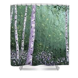 Summer Birch Trees Shower Curtain