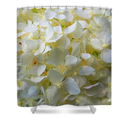 Summer Blossoms Shower Curtain