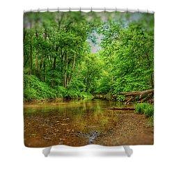 Summer Breeze II Shower Curtain