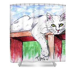 Summer Cat Shower Curtain by P J Lewis