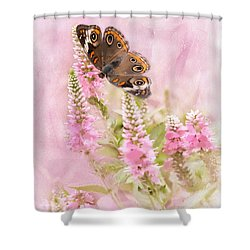 Summer Daze Shower Curtain