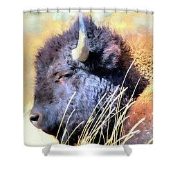Summer Dozing - Buffalo Shower Curtain