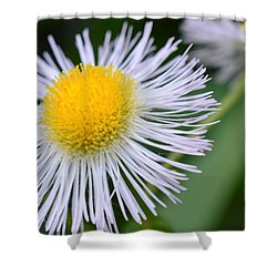 Summer Flower Shower Curtain