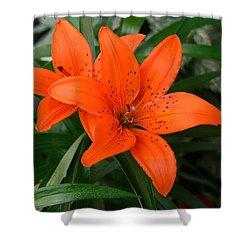 Summer Flower Shower Curtain
