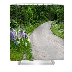 Shower Curtain featuring the photograph Summer Flowers By A Country Road by Kennerth and Birgitta Kullman