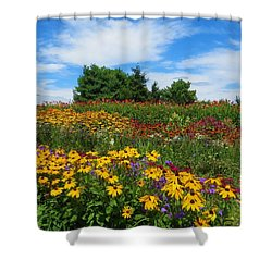 Summer Flowers In Pa Shower Curtain by Jeanette Oberholtzer