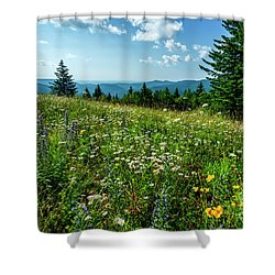 Summer Flowers In The Highlands Shower Curtain