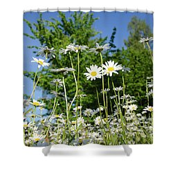 Shower Curtain featuring the photograph Summer Flowers by Kennerth and Birgitta Kullman