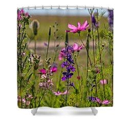 Summer Garden Shower Curtain by Alana Thrower