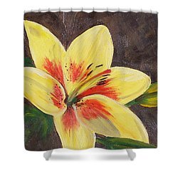Shower Curtain featuring the painting Summer Glow by Bonnie Heather
