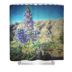 Summer Glow Shower Curtain