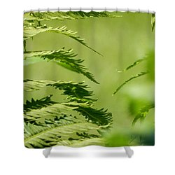 Shower Curtain featuring the photograph Summer Greens by Betty-Anne McDonald