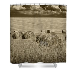Summer Harvest Field With Hay Bales In Sepia Shower Curtain by Randall Nyhof