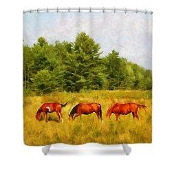 Summer Hay Burners Shower Curtain