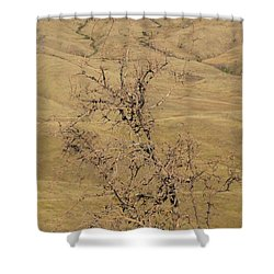 Summer Idaho Shower Curtain