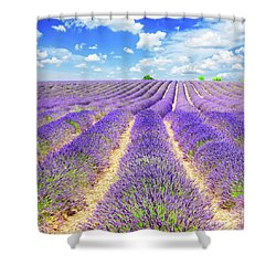Summer In Provence Shower Curtain by Anastasy Yarmolovich