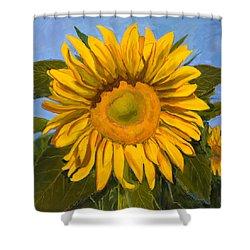 Summer Joy Shower Curtain by Billie Colson