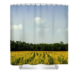 Summer Landscape Shower Curtain