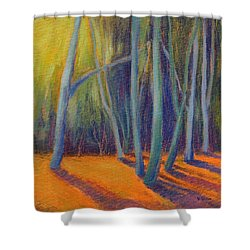Summer Light Shower Curtain