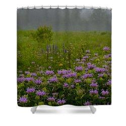 Summer Mist Shower Curtain by Tim Good