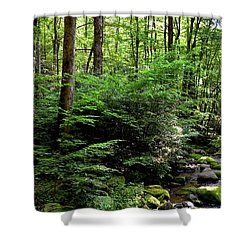 Summer Mountainside Shower Curtain