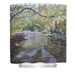 Summer On The South Tow River Shower Curtain