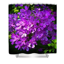 Summer Purple Shower Curtain