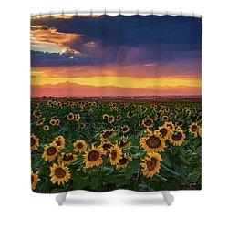 Summer Radiance Shower Curtain