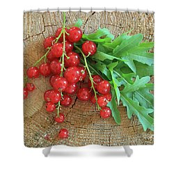 Summer, Red Berries And Rucola On Wooden Board Shower Curtain