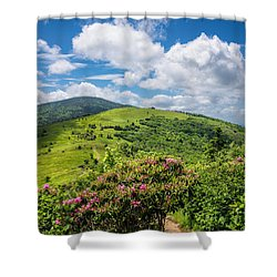 Summer Roan Mountain Bloom Shower Curtain by Serge Skiba