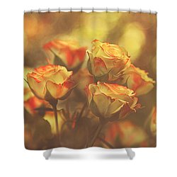 Summer Roses #1 Shower Curtain