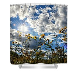 Shower Curtain featuring the photograph Summer Scene by Nikki McInnes