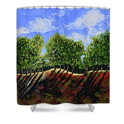 Summer Shadows Shower Curtain by Donna Blackhall