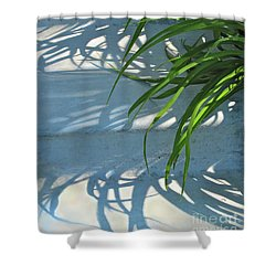 Shower Curtain featuring the photograph Summer Shadows by Nancy Lee Moran