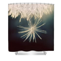 Shower Curtain featuring the photograph Summer Snow by Amy Tyler