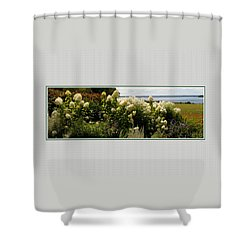 Shower Curtain featuring the photograph Summer Spledor by Tom Prendergast