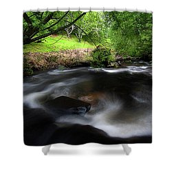 Summer Stream Shower Curtain
