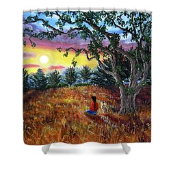 Summer Sunset Meditation Shower Curtain