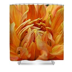 Shower Curtain featuring the photograph Summer Tales by Michiale Schneider