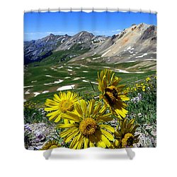 Shower Curtain featuring the photograph Summer Tundra by Karen Shackles