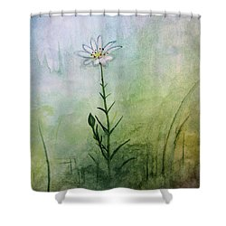 Summer Wildflower Shower Curtain
