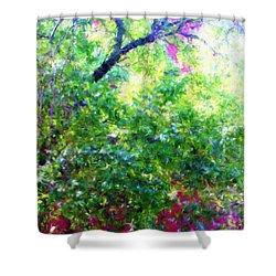 Summer Window Shower Curtain