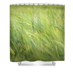 Summergreen Shower Curtain